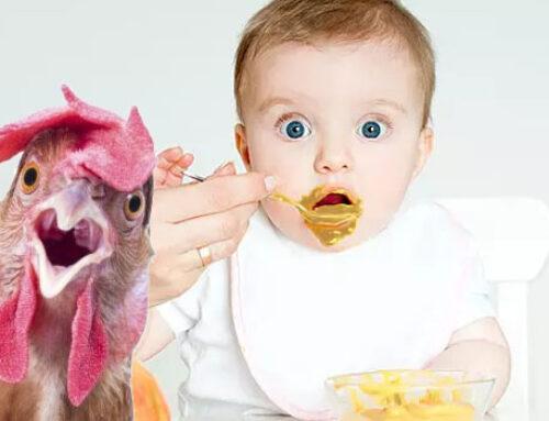 Блюда для детей от 1 года: рецепты из курицы